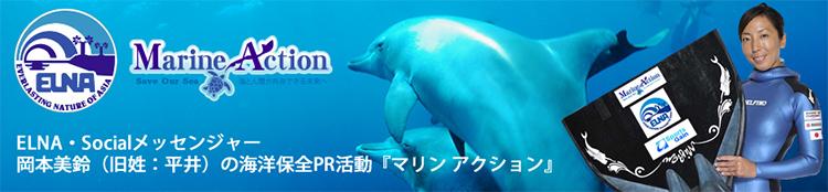 岡村美鈴の海洋保全活動