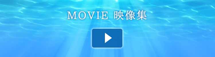 movie_bunner