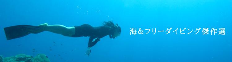 sea_bunner